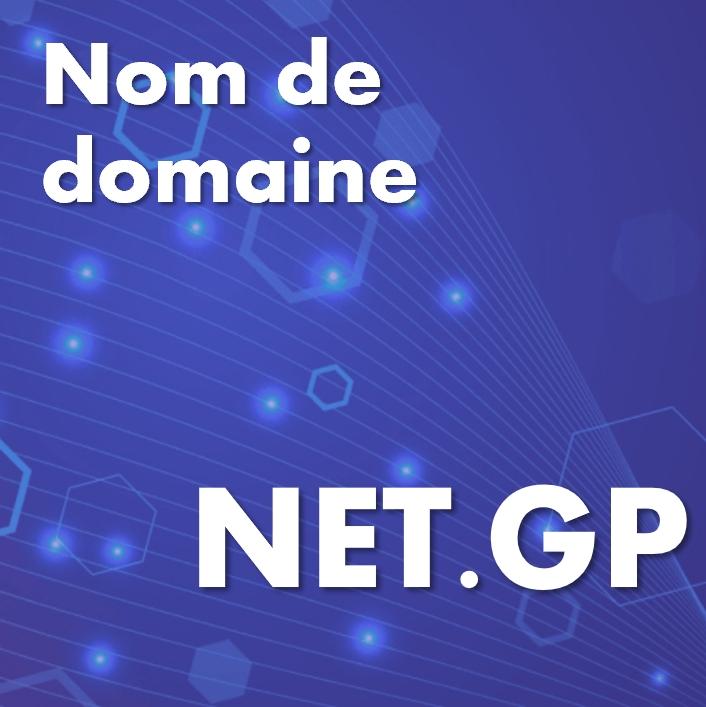 Nom de domaine net.gp